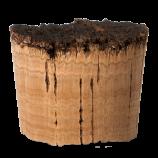 Conical Batoque Cork Designed (natural) – CORKCHO